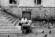 Turkey Art - Istanbul Pigeon Feed Vendor by Dean Harte