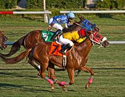 Racetrack Photos - It Takes Talent by East Coast Barrier Islands Betsy A Cutler