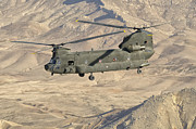 Helicopter Art - Italian Army Ch-47c Chinook Helicopter by Giovanni Colla