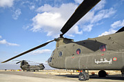 Airfield Prints - Italian Army Ch-47c Chinook Helicopters Print by Giovanni Colla