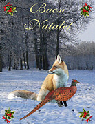 Ellenisworkshop Prints - Italian Christmas Fox Print by Eric Kempson