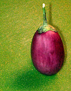 Eggplant Framed Prints - Italian Eggplant Framed Print by Denise Keegan Frawley