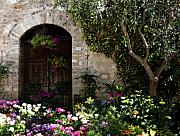 Europe Photo Originals - Italian Front Door Adorned with Flowers by Marilyn Hunt