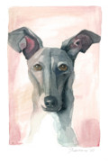 Pet Dog Originals - Italian Greyhound by Mike Lawrence