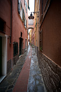 Cinque Terre Metal Prints - Italian Pathway Metal Print by Mike Reid