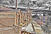 Italian Village Prints - Italian Village-Sydney Harbor Bridge Print by Douglas Barnard