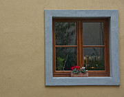 Lucca Framed Prints - Italian Window Framed Print by Lois Johnson