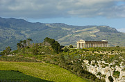 Sicily Prints - Italy, Sicily, Segesta, Greek Temple Print by Bruno Morandi