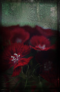 Deep Red Flowers Posters - Its a Heartache Poster by Laurie Search