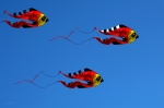 Bruster Photo Prints - Its A Kite Kind Of Day Print by Clayton Bruster