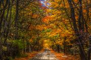 Autumn Art Prints - Its a MICHIGAN Fall Print by Robert Pearson