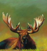 Elk Drawings - Its All About The Rack by Frances Marino