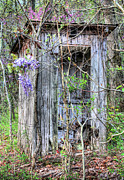 Antique Outhouse Photos - Its Go Time by JC Findley