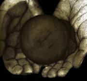Sphere Drawings - Its in our hands by John Stuart Webbstock