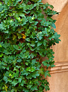 Tlaquepaque Sedona Prints - Its Moments Like These Print by Jeffrey Campbell