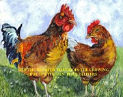Chicken Drawings Framed Prints - Its The Rooster Framed Print by Carol Wisniewski