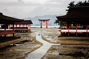 Shrine Island Prints - Itsukushima Shrine on Miyajima Print by Ei Katsumata