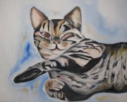 Canvas Cat Prints Prints - Ivana Ann Print by Ann Willmore