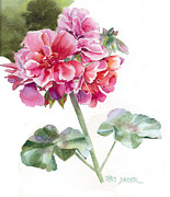 Geranium Paintings - Ivy Geranium Molina by Pat Yager