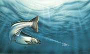 Lakes Paintings - J-Pluggin Salmon by JQ Licensing