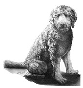 Custom Pet Drawing Prints - Jack    Labradoodle Print by Marianne NANA Betts