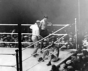 Boxing Framed Prints - Jack Dempsey Knocks Down Gene Tunney Framed Print by Everett