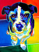 Dog Print Framed Prints - Jack Russell - Pistol Pete Framed Print by Alicia VanNoy Call