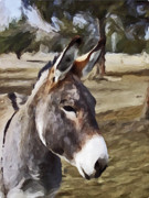Donkey Digital Art Metal Prints - Jack Metal Print by Susie Fisher