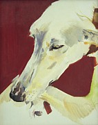Whippet Dog Framed Prints - Jack Swan I Framed Print by Sally Muir