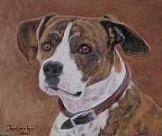 Boxer Pastels Framed Prints - Jackie the Boxer Framed Print by Jan Fontecchio
