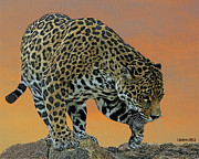 Jaguar Digital Art - Jaguar At Sunset 2 by Larry Linton
