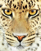 Wildlife Art Digital Art Framed Prints - Jaguar Framed Print by Bill Fleming