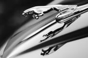 Car Abstracts Photo Posters - Jaguar Car Hood Ornament Black and White Poster by Jill Reger