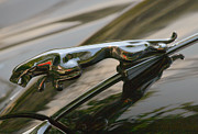 Vintage Hood Ornament Painting Prints - Jaguar Hood Ornament Print by Melodie Douglas