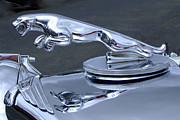 Ron Roberts Photography Greeting Cards Prints - Jaguar Hood Ornament Print by Ron Roberts