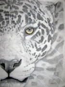 Photographs Pastels Metal Prints - Jaguar Metal Print by Mayhem Mediums