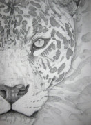 Photographs Drawings Prints - Jaguar Pointillism Print by Mayhem Mediums