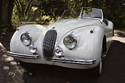 Digital Processing Prints - Jaguar XK120 Doing a Time Out Print by Curt Johnson