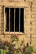 Window Bars Prints - Jailhouse Window Print by Phyllis Denton