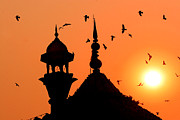 Flock Of Bird Art - Jama Masjid Mosque At Sunset by Dennis M. Steshenko