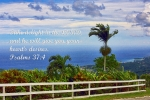 Psalms Framed Prints - Jamaican Ocean View Ps. 37v4 Framed Print by Linda Phelps