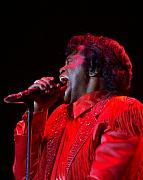 King James Framed Prints - James Brown Framed Print by Bob Guthridge