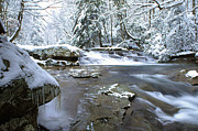 Birch River Prints - January Freeze Print by Thomas R Fletcher