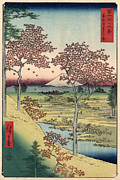 Japanese Landscape Framed Prints - Japan: Maple Trees, 1858 Framed Print by Granger