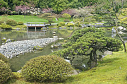Landscaped Prints - Japanese Arboretum Print by Rob Tilley
