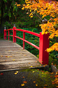 Pathways Photos - Japanese Bridge by Inge Johnsson