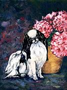 Japanese Chin Framed Prints - Japanese Chin and Hydrangeas Framed Print by Kathleen Sepulveda