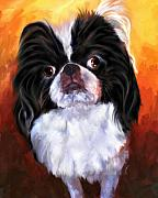 Japanese Chin Framed Prints - Japanese Chin Portrait Framed Print by Jai Johnson