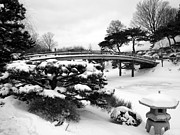 Snow . Bridge Posters - Japanese Garden bridge and lantern Poster by David Bearden