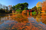 Bklyn Prints - Japanese Garden Brooklyn Botanic Garden Print by Mark Gilman